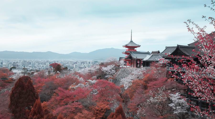 推荐旅游跟拍-重庆中国青年旅行社