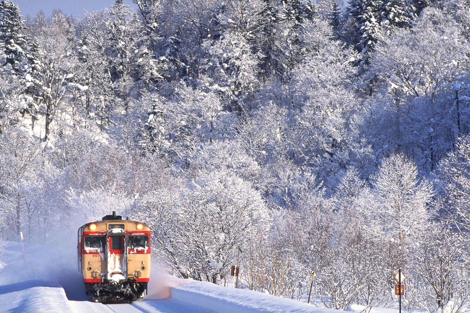 日本东京+箱根+富士山+京都+奈良+大阪6日游温泉之旅(暖冬双古都)