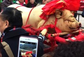 巴南乡村印象刨猪汤、年货节一日游