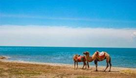 重慶旅行社國內旅游熱賣推薦