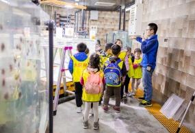 重庆市内深海少年科考队一日营(抚摸海豚+水母繁殖+训练海狮)